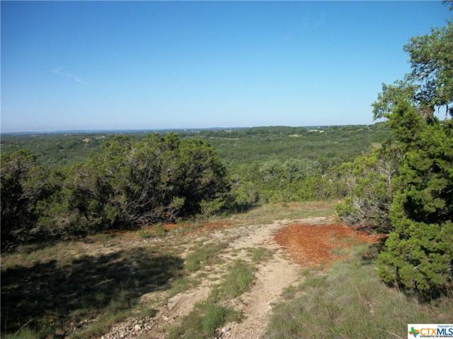 1534 Primrose, Canyon Lake, TX 78133 (MLS #340664) :: Magnolia Realty