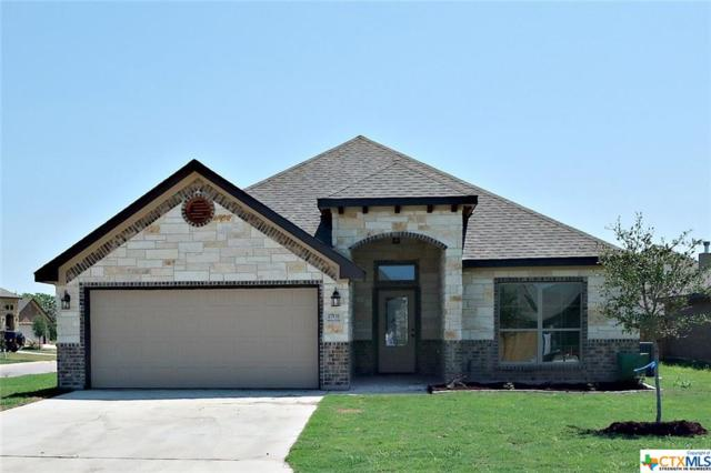 2701 Margie Drive, Temple, TX 76502 (MLS #345844) :: The Suzanne Kuntz Real Estate Team