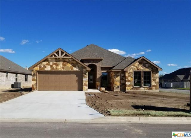 2715 Margie Drive, Temple, TX 76502 (MLS #348287) :: The Suzanne Kuntz Real Estate Team