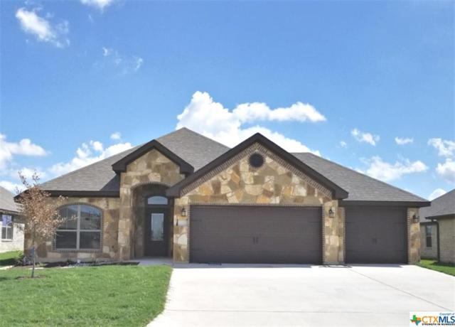 2713 Paisley Drive, Temple, TX 76502 (MLS #348364) :: The Suzanne Kuntz Real Estate Team