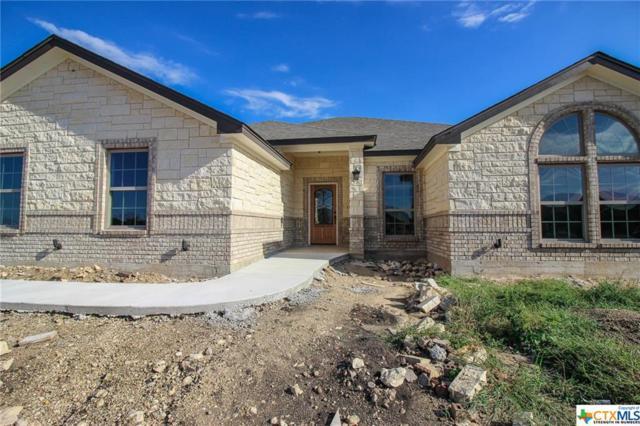 8310 Tesoro Drive, Temple, TX 76504 (MLS #349947) :: Erin Caraway Group