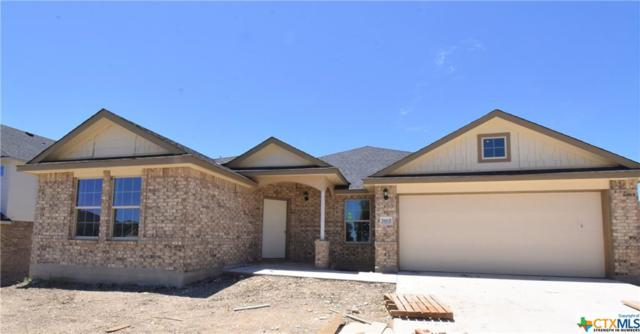7603 Melanite Drive, Killeen, TX 76542 (MLS #357870) :: Erin Caraway Group