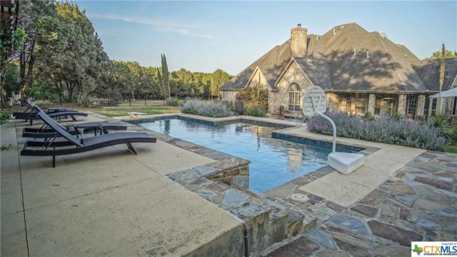 1734 Hunters Run, New Braunfels, TX 78132 (#358223) :: Realty Executives - Town & Country