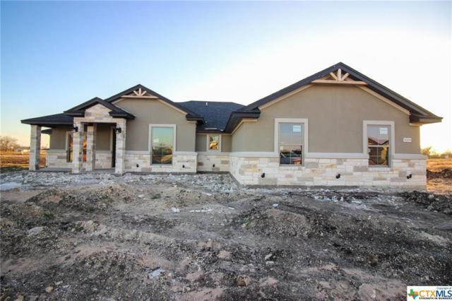 8309 Tesoro Drive, Temple, TX 76504 (MLS #359220) :: Erin Caraway Group