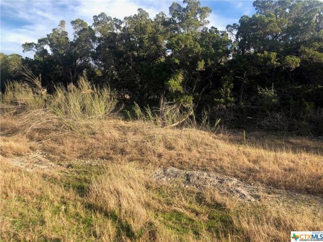 214 Longwood, New Braunfels, TX 78132 (MLS #359536) :: Magnolia Realty