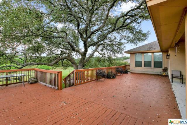 123 Iron Horse, New Braunfels, TX 78132 (MLS #359556) :: The Suzanne Kuntz Real Estate Team