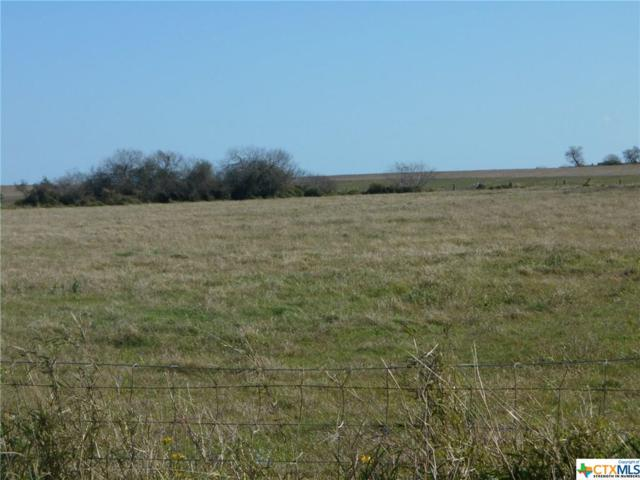 Co. Rd. 1110 S Co. Rd. 1110, Riviera, TX 78379 (MLS #361328) :: The Zaplac Group