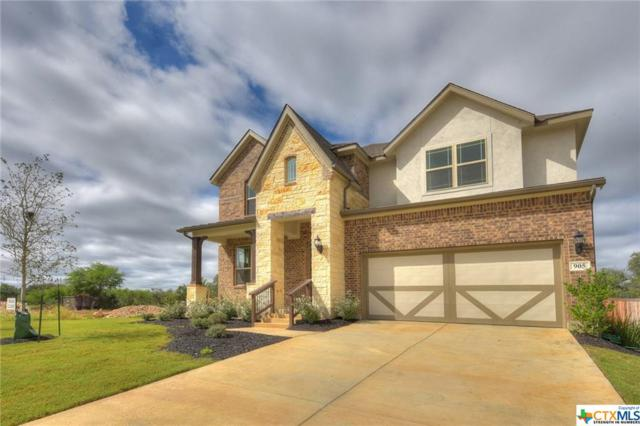 905 Carriage Loop, New Braunfels, TX 78132 (MLS #361735) :: Magnolia Realty