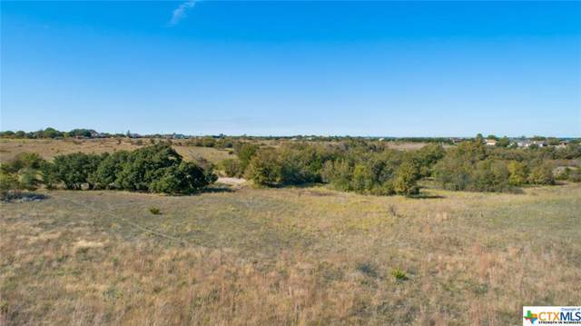 TBD Hempel, Copperas Cove, TX 76522 (MLS #367371) :: The Zaplac Group