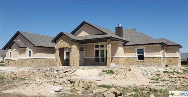4206 Green Creek Drive, Salado, TX 76571 (MLS #368079) :: Magnolia Realty
