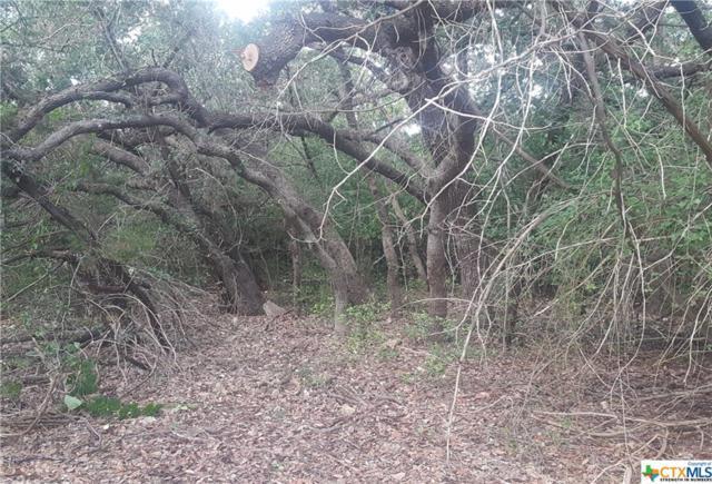 188 Falling Hills, New Braunfels, TX 78132 (MLS #373518) :: Erin Caraway Group