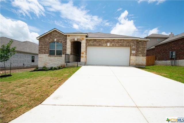 3618 Conrads Cloud, New Braunfels, TX 78130 (#373913) :: Realty Executives - Town & Country