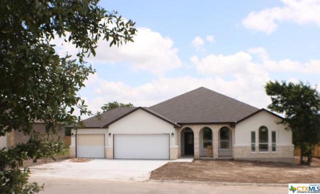 5517 Imogen Drive, Belton, TX 76513 (MLS #375329) :: Erin Caraway Group