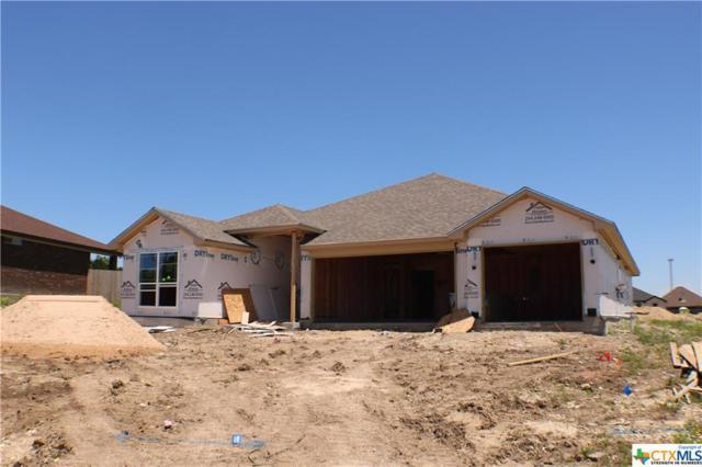 105 Button Bush Court, Nolanville, TX 76559 (MLS #375368) :: The Graham Team