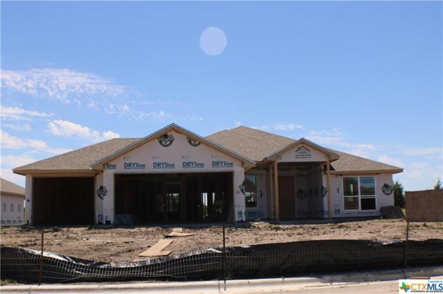 228 Slippery Elm Drive, Nolanville, TX 76559 (MLS #375370) :: The Graham Team