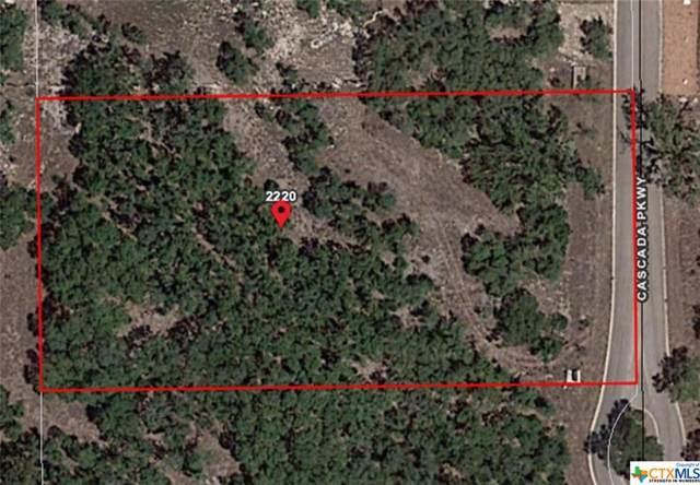 2220 Cascada Parkway, Spring Branch, TX 78070 (MLS #379316) :: Vista Real Estate