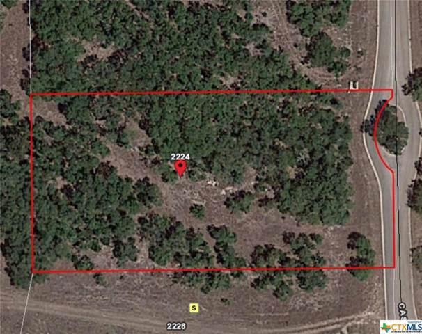 2224 Cascada Parkway, Spring Branch, TX 78070 (MLS #379352) :: Vista Real Estate