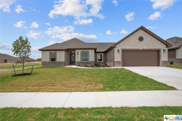 408 Magnolia Drive, Troy, TX 76579 (MLS #385239) :: Brautigan Realty
