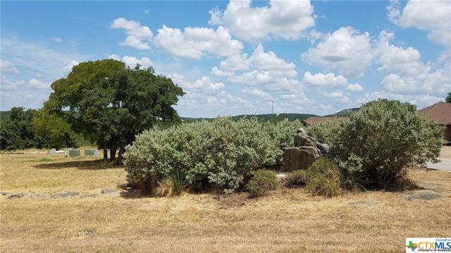 0 Tbd, Canyon Lake, TX 78133 (MLS #385614) :: Vista Real Estate