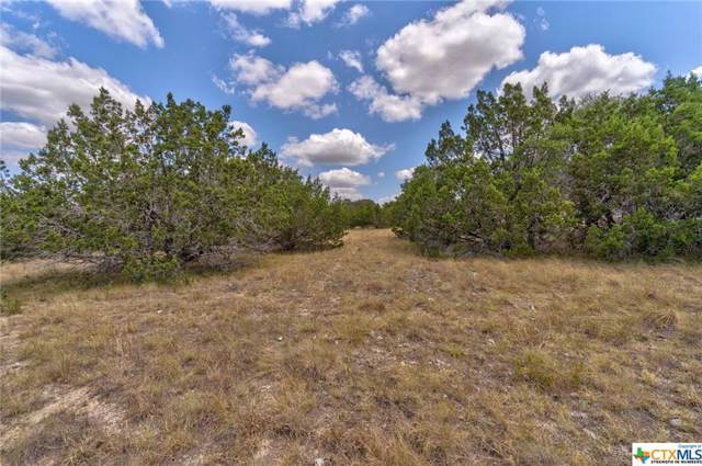 2051 Lost Valley Road, Dripping Springs, TX 78620 (MLS #388417) :: The i35 Group