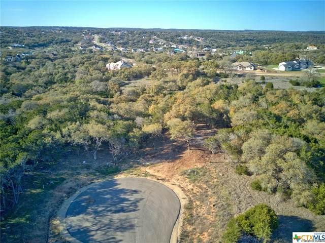 1218 Stone Gully, New Braunfels, TX 78132 (MLS #391864) :: Brautigan Realty