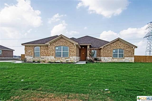 6143 Big Tree Drive, Salado, TX 76571 (MLS #404277) :: The Real Estate Home Team