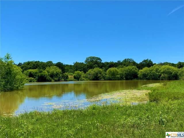 TBD Fm 2237, Flatonia, TX 78941 (MLS #416414) :: Kopecky Group at RE/MAX Land & Homes