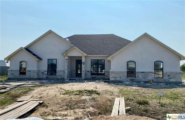 8313 Tesoro Drive, Temple, TX 76504 (MLS #418263) :: The Real Estate Home Team