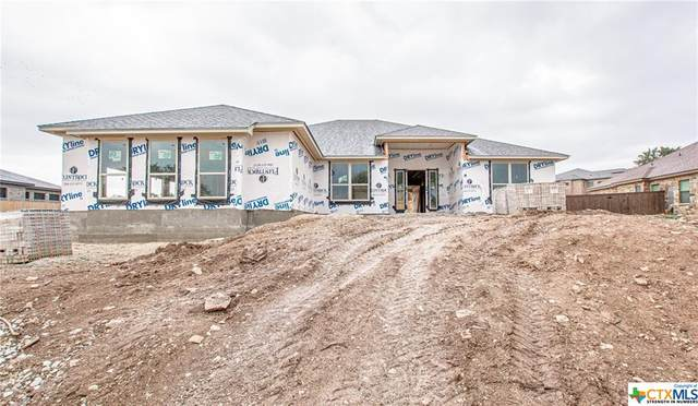 5007 Brandy Drive, Nolanville, TX 76559 (MLS #427649) :: Vista Real Estate