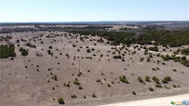 000 County Road 3930, Lampasas, TX 76550 (MLS #432197) :: Texas Real Estate Advisors