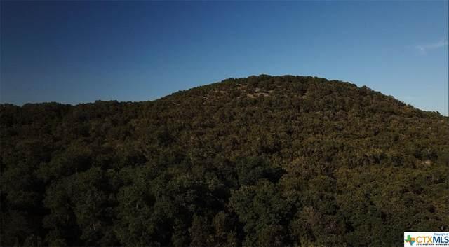 0 TBD Corner Of Fm 306 @ Cannan, Canyon Lake, TX 78132 (MLS #435263) :: The Myles Group