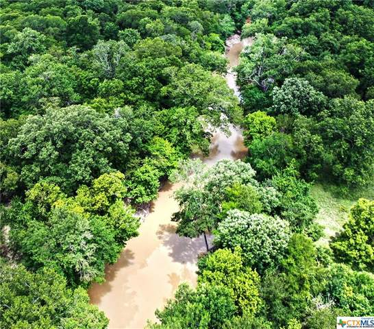 TBD Moccasin Bend Road, Gatesville, TX 76528 (MLS #436905) :: Rutherford Realty Group