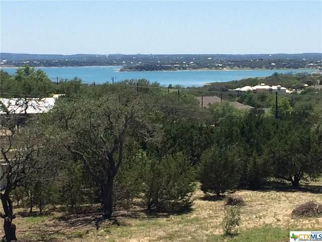 207 Bobby Clark Drive, Canyon Lake, TX 78133 (MLS #438174) :: Kopecky Group at RE/MAX Land & Homes
