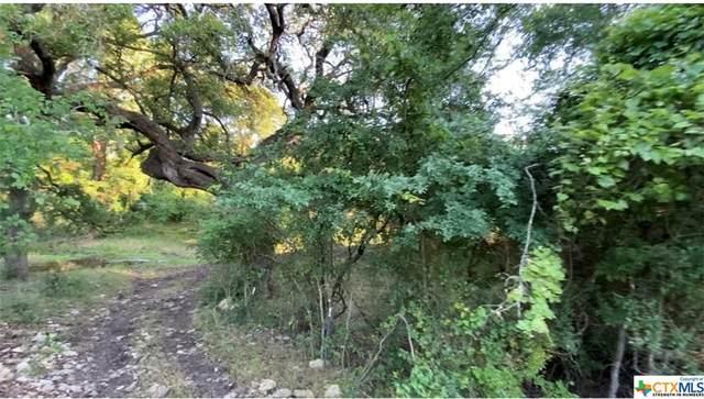 11385 Fm 182 Highway, Gatesville, TX 76528 (MLS #439941) :: Texas Real Estate Advisors