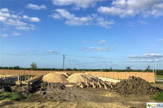 353 Horsemint Way, San Marcos, TX 78666 (MLS #441969) :: Rutherford Realty Group