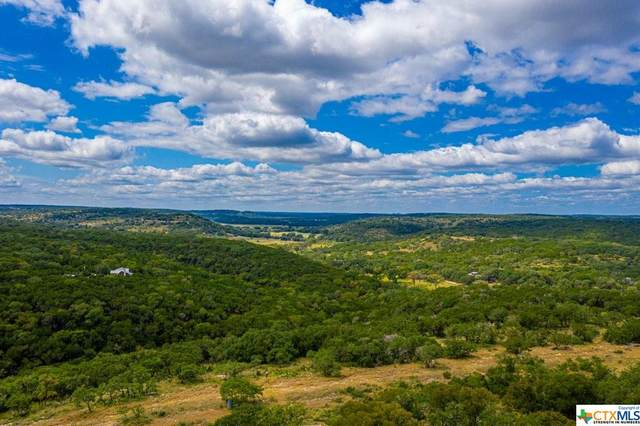 5771 Hilliard Road Road, San Marcos, TX 78666 (MLS #442902) :: The Zaplac Group