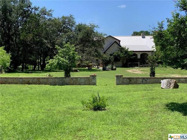 1361 Ervendberg Avenue, New Braunfels, TX 78130 (MLS #453284) :: Rebecca Williams