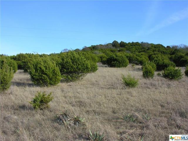 14.9 Acres Grimes Crossing, Copperas Cove, TX 76522 (MLS #8217021) :: The Graham Team