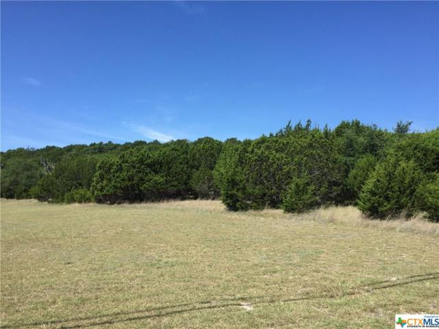 9.62 Acres Pecan Cove Drive, Copperas Cove, TX 76522 (#8218989) :: Realty Executives - Town & Country