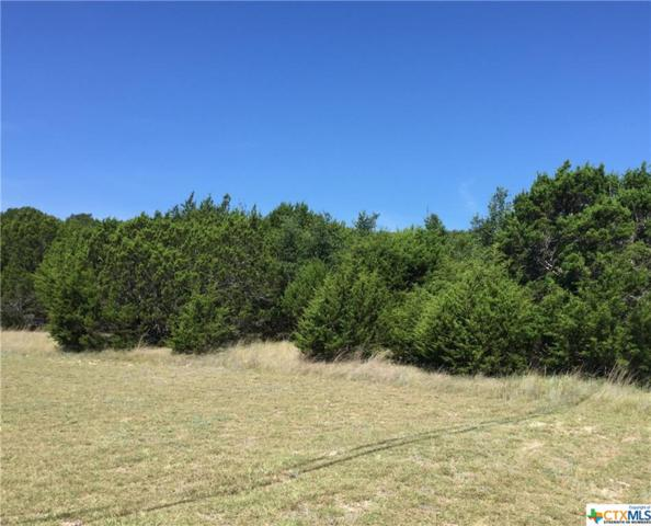 5.92 Acres Pecan Cove Drive, Copperas Cove, TX 76522 (#8218991) :: Realty Executives - Town & Country