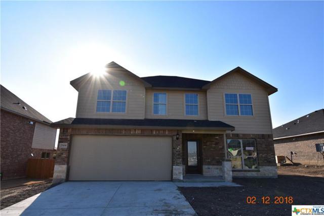 7509 Pyrite Drive, Killeen, TX 76542 (MLS #8219618) :: Erin Caraway Group