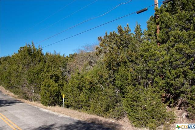 1371 Moerike Road, Canyon Lake, TX 78133 (MLS #219501) :: Vista Real Estate