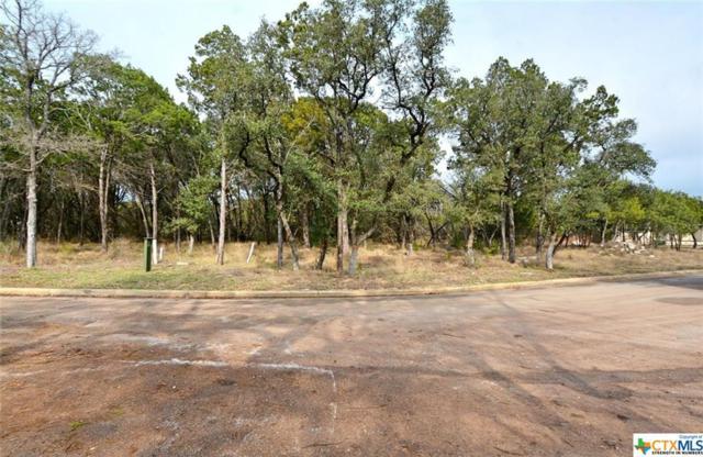 2411 Geneseo Oaks, New Braunfels, TX 78132 (MLS #301230) :: Erin Caraway Group