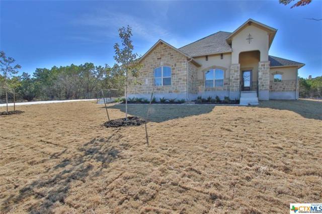 2135 Oakwood Hollow, New Braunfels, TX 78132 (MLS #327621) :: Magnolia Realty