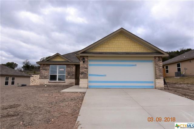 3802 Flatrock Mountain Drive, Killeen, TX 76549 (MLS #329455) :: Texas Premier Realty