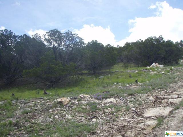 1017 El Capitan, Canyon Lake, TX 78133 (MLS #347594) :: Magnolia Realty