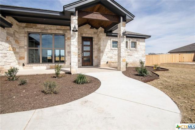 8314 Tesoro Drive, Temple, TX 76504 (MLS #349944) :: Erin Caraway Group