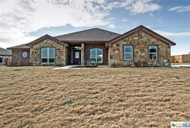 4005 Joe Bozon Drive, Salado, TX 76571 (MLS #353674) :: Erin Caraway Group