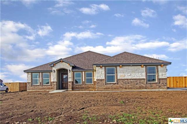 4013 Joe Bozon Drive, Salado, TX 76571 (MLS #362578) :: Erin Caraway Group
