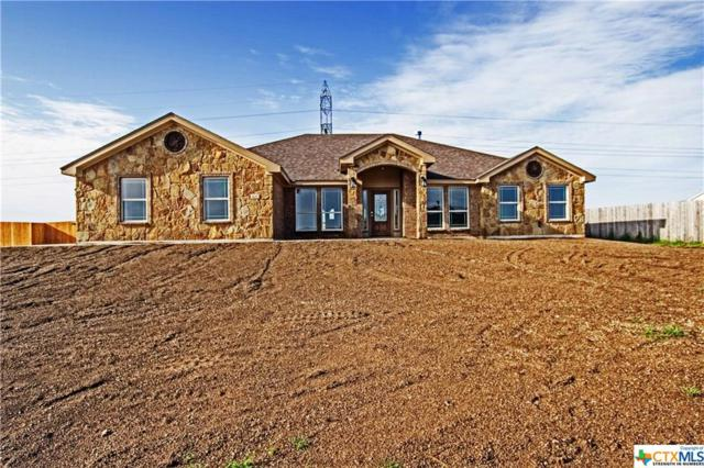 4017 Joe Bozon Drive, Salado, TX 76571 (MLS #364649) :: Erin Caraway Group